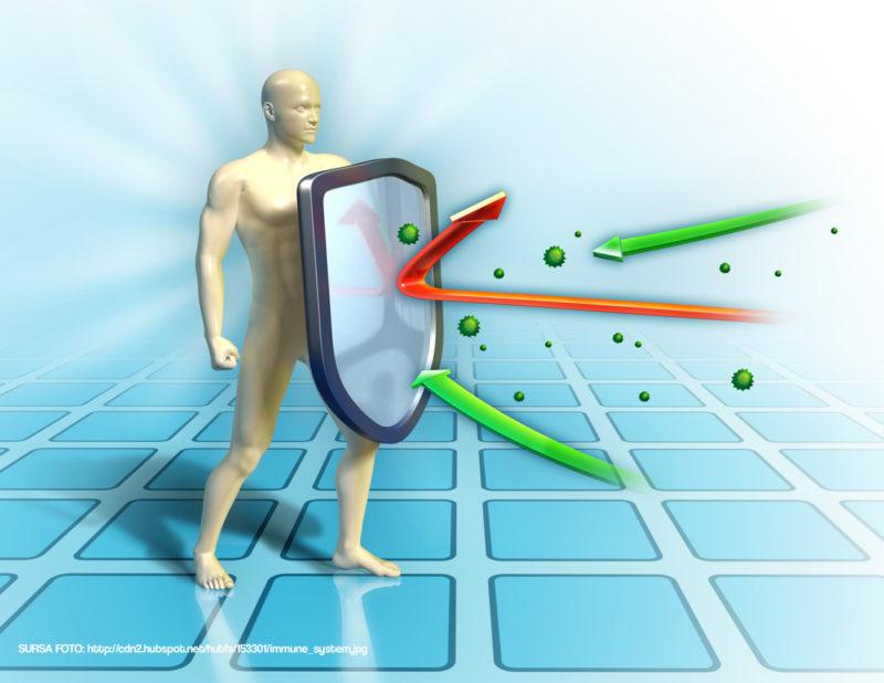 sistemului imunitar